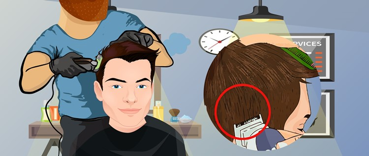 Begin Clipping the Hair