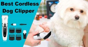 Best Cordless Dog Clippers: Machines to Go with in 2021