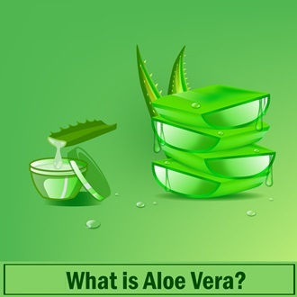 What is Aloe Vera