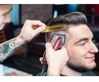 Overall Performance Capability Wahl Legend Clipper #8147