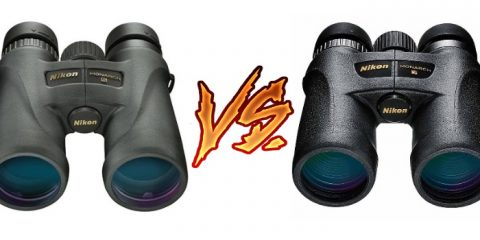 Nikon Monarch 5 vs 7